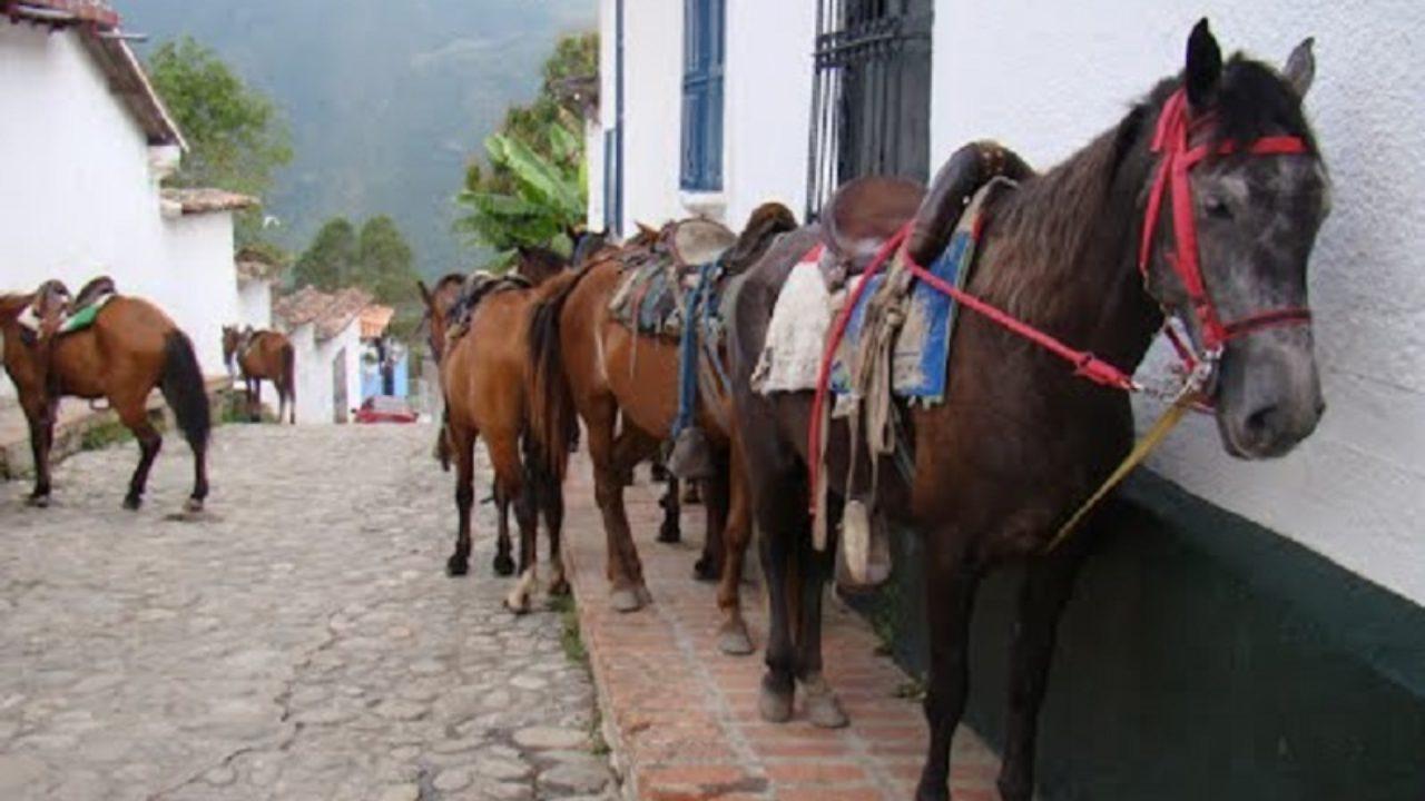 Jají y sus caballos