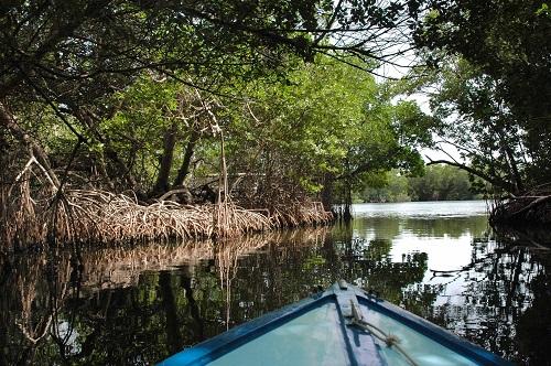 Laguna de la Restinga en La Perla del Caribe
