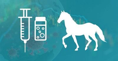 vacunas en los caballos